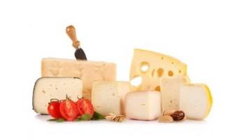 formaggio bio vendita online