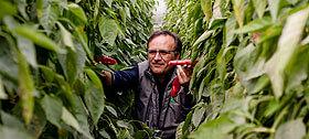 Paniere Bio - Produttori Agroalimentari Biologici