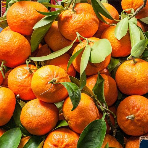 I benefici dei mandarini siciliani